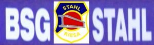 Logo BSG Stahl Riesa 1