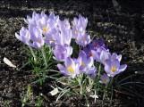 Frühlingswochenende
